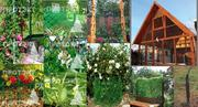 Материалы для сада,  огорода,  ландшафтного дизайна
