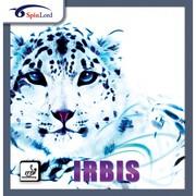 Настольный теннис http://www.tt-ua.com/: накладка Spinlord Irbis