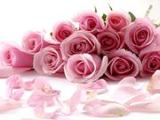 Лучшие цветы Астаны!