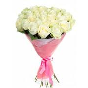 51 белых роз с доставкой