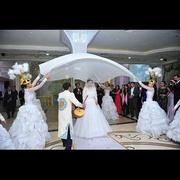 Проведение свадебных услуг - агентство