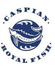 Осетровая ферма ТОО «Caspian Royal Fish» продаст свежую рыбу Стерлядь