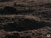Чернозем(плодородный слой)