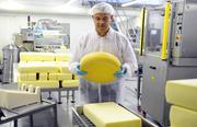 Работа в Швейцарии: Производство Сыра